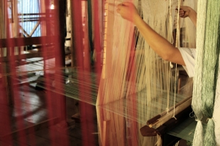 Silk threads in the loom